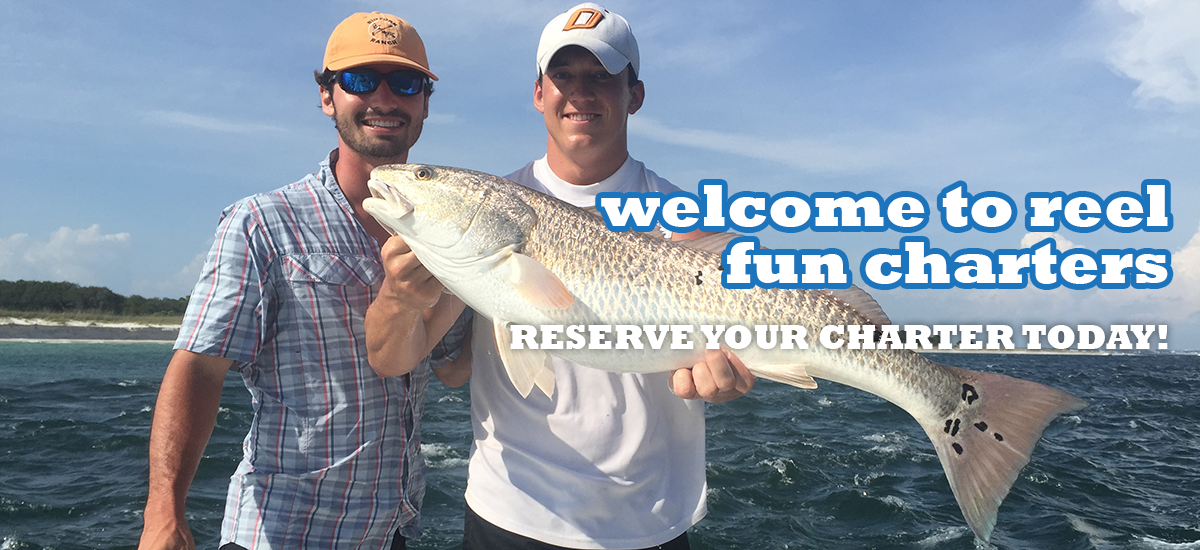 Reel fun charters panama city beach fishing charters for Panama city beach charter fishing
